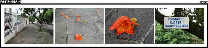 Cuidado! Flores escorregadias!
